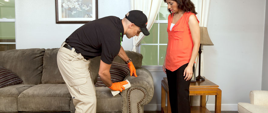 Gaylord, MI carpet upholstery cleaning